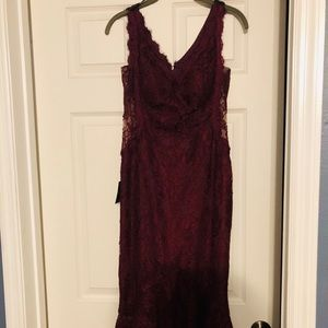 BRAND NEW never worn W/TAGS BEBE lace dress